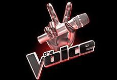 Audition for The Voice or American Idol  Will I make it? Probably not. But at least I can say I did it! :)