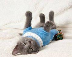 l-Sweater-weather-1.jpg (580×465)