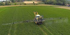 Des insectes résistants aux pesticides inquiètent les Etats-Unis