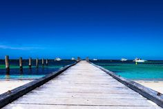 Blue paradise  #fiftyshadesofblue #beach #picoftheday #fujifilm #fujixt10 #nofilter #december #island #rottnestisland #paradise #roadtrip #travel #Traveling #livelovelaughandtravel #wanderess #wanderlust #amazed #beautifulday #westernaustralia #westcoast #oz #australia #photography #phototravel #instaphoto #ocean by lora_b06 http://ift.tt/1L5GqLp