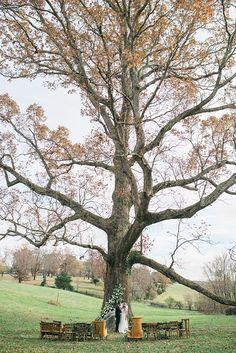 Oatlands Historic House & Gardens-November 2014 Swooned Magazine styled photo shoot. Vintage rustic outdoor wedding ceremony. White oak tree. Lissa Ryan Photography.