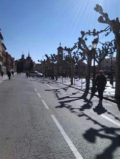 60 Ideas De Alcalá De Henares En 2021 Alcala De Henares España Comunidad De Madrid