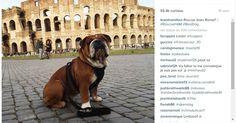 Roscoe também gosta de viajar bastante. Essa foto aí foi tirada em Roma, na Itália