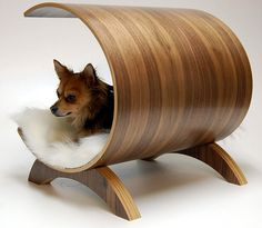 love the dog bed, but i'd also love to know what kind of dog that is. My shelter pup looks just like it. -Fancy