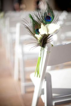 For then chairs for ceremony, minus the white calla lilies only because I'm not using them anywhere else. But i like the use of the Peacock feathers. Peacock Theme, Peacock Wedding, Floral Wedding, Wedding Flowers, Peacock Colors, Wedding Pews, Church Wedding, Our Wedding, Dream Wedding