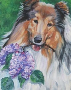 Rough Collie art print CANVAS print of LA Shepard by TheDogLover