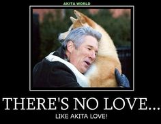 Akita Hachiko and Richard Gere  True story of  a dogs   devotion.  How you loved your Akitas...and, how they loved you, never leaving your bed xxx and your Bear and Lilly, too... Hachi A Dogs Tale, I Love Dogs, Puppy Love, Fitness Factory, A Dog's Tale, Japanese Akita, Ugly Cry, Anatole France, Akita Dog