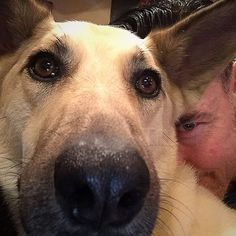 """""""Take it slow and easy. Sweet weekends to you all from Lucy and I. To my Strainers, see ya Sunday:-) Kevin Durand, See Ya, The St, Movies And Tv Shows, Westerns, Hot Guys, Corgi, Rain, Sunday"""