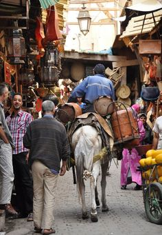 Food Tour Through Fez Morocco