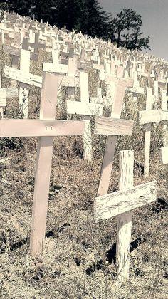 crosses, taken in lafayette california