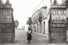 La Valencia desaparecida: Ayora
