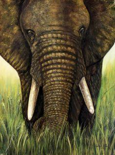 Elephant, Pastel, Cake, Elephants, Crayon Art, Melting Crayons