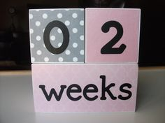 Age Blocks - Baby Photo Prop - Monthly Pictures - Wooden Number Blocks - Maternity Photo - Pink Gray