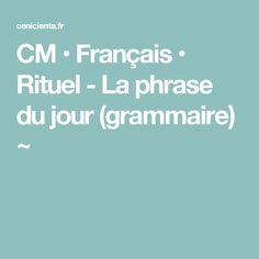 CM • Français • Rituel - La phrase du jour (grammaire) ~