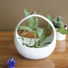 buy 1pc crescent design white ceramic planter porcelain decorative flower pot hanging basket for home #garden #basket