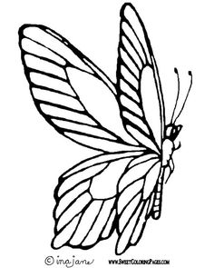 Butterfly Plus Tons Of Coloring Or Digi Free Pages