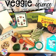 Farm Math and Literacy Centers (Freebies too) – Pocket of Preschool Veggie science exploration more fun farm math & science activities for my preschool, prek, and kindergarten kiddos. Science Center Preschool, Preschool Food, Preschool Garden, Kindergarten Science, Preschool Curriculum, Science Centers, Science Fun, Science Table, Montessori Elementary