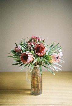 Flowers >> Proteas in a simple glass mug.