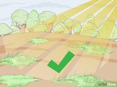 How to Prepare the Soil for Strawberries: 15 Steps (with Pictures) Strawberry Beds, Strawberry Plants, Vegetable Crates, Vegetable Garden, Growing Strawberries In Containers, Growing Winter Vegetables, Soil Layers, Peat Moss, Image Title