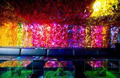 greenhouse club wall