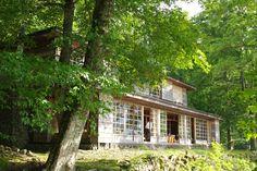 Ajiro, Cabin, House Styles, Plants, Home Decor, Decoration Home, Room Decor, Cottage, Planters