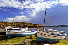 Cadaques Spain, Barcelona, Bus Station, Medieval Town, Mexican Style, Wine Making, Fishing Boats, Boating, Small Towns