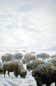 Herd in the snow