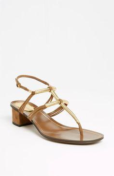 Gucci 'Anita' Thong Sandal   Nordstrom