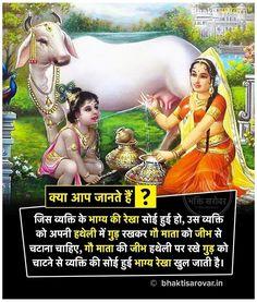 JaiShreeYasodhaKrish❣️❣️❣️❣️❣️❣️❣️❣️ Hinduism Quotes, Sanskrit Quotes, Sanskrit Mantra, Vedic Mantras, Hindu Mantras, Gernal Knowledge, Knowledge Quotes, Geeta Quotes, Interesting Facts In Hindi