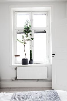 Style and Create — Graphic & monochrome with personal details and lovely plants in a Stockholm apartment via Fantastic Frank | Styling by Åsa Copparstad | Photo by Anna Malmberg