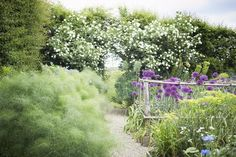 Sarah Raven, gardener, writer and TV personality, has it pretty good as far as I can tell. She lives in East Sussex, England, a mecca for gardeners, in a c