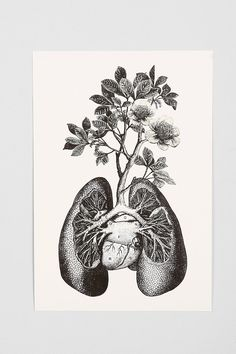 Cirque D'Art Lungs Art Print. Really really cool, but not sure how to work it into a room.