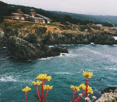 For this month's Travel Guide, we head to The Sea Ranch – a time capsule community stretching across 10 miles of pristine California coast.