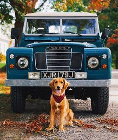 Autumn Gives Us Life - Classy Girls Wear Pearls Land Rovers, Land Rover Defender, Astuces Camping-car, Land Rover Series 3, Car Goals, Off Road, Cute Cars, Future Car, My Ride