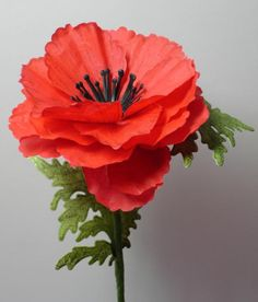 Flower Poppy Stem by OksanaClegg - Cards and Paper Crafts at Splitcoaststampers