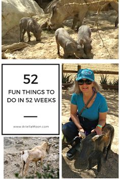 Ariella Moon. On Mother's Day go see the baby animals at The Living Desert and Gardens. 52 Fun Things To Do In 52 Days, Fun Thing #3