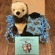 Significant Otter Package! Significant Otter, Otter Love, Bear Shop, Sea Otter, Sanrio Characters, Cat Boarding, Love Pet, Pet Clothes, Comfy Clothes