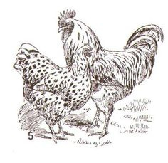 roosters and chickens painting books | Recent Photos The Commons Getty Collection Galleries World Map App ...