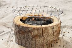 Ecogrill met barbecue rooster