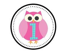 Owl Classroom Decor image 3