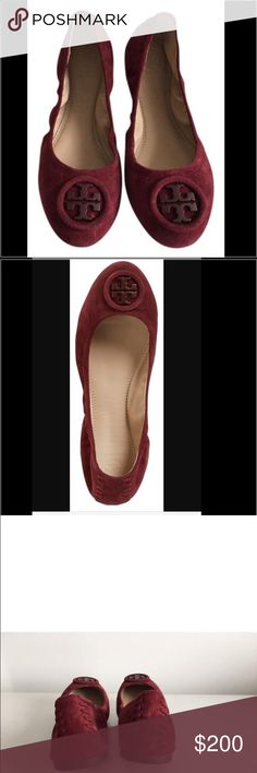 Tory Burch Borscht Allie Ballet Flats Tory Burch Borscht Allie Ballet Flats.  New without tags.  These are one of the most comfortable Tory Burch flats.  I own a pair and used it for traveling.  Suede exterior with leather insoles. Tory Burch Shoes Flats & Loafers
