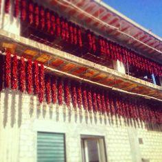 I #peperonidisenise o #peperonicruschi sono peperoni dolci #essiccati tipici di #lucania. Sono un prodotto ad #indicazionegeograficatipica e vengono coltivati nelle campagne di #senise e nei paesi limitrofi. Order www.sudrise.com Stores.ebay.it/sudrise #pepper #swetpeppers #basilicata #prodottitipici #lucaniadamare #igt #catering #ristorante #chef #italia #basilicatadascoprire @peperoncinipiccanti @agriturismolameridiana @ristorante_chaletdelbosco #damangiare #delicious #mangiare