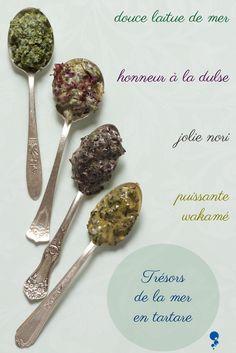 Faire & personnaliser son tartares d'algues maison (laitue de mer - nori - dulse - wakamé) / www.chaudron-pastel.fr