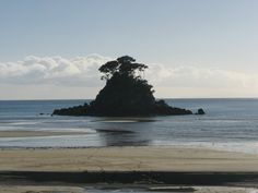 Able Tasman National Park, NZ, I could retire here.
