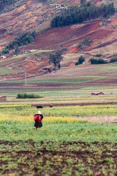 Mujer Trabajando. #cajamarca #rbns #canon #paisaje #foto #work #landscape #campo #woman #mujer