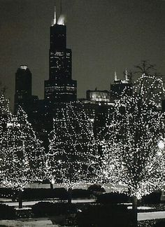 a5ebed3a841cf Chicago Chicago Christmas