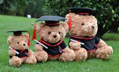Graduation Plush Teddy Bears
