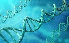 #Erbgutoptimierung: Forscher versehen Embryonen erstmals mit HIV-Immunität - Trends der Zukunft: Trends der Zukunft Erbgutoptimierung:…