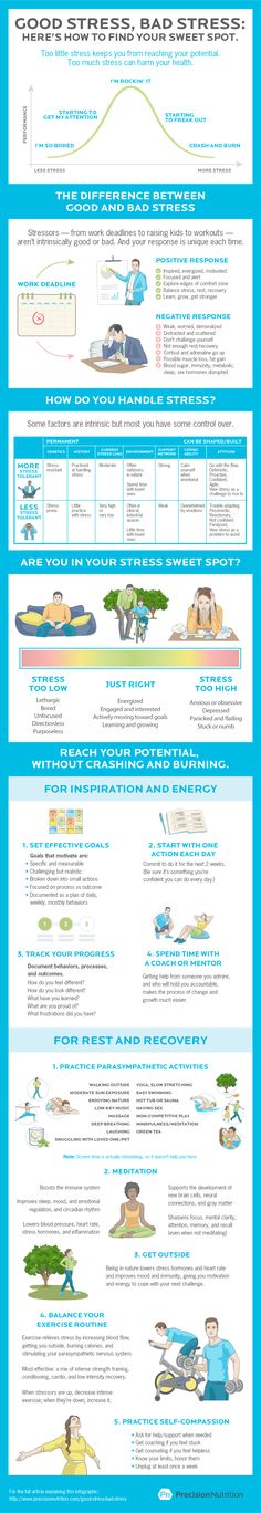 Good stress is the median between no stress and too much, optimal performance requires a little stress to get the blood flowing any oxytocin working. A noticeable symptom of good stress versus bad stress is begin alert versus distracted. Health Advice, Health And Wellness, Health Fitness, Gym Fitness, Stress And Anxiety, Precision Nutrition, Stress Relief Tips, Effects Of Stress, Tips