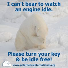 Did you know that idling engines release 58 million tons of CO2 every year in the U.S. alone? Join us in making NO IDLING a social norm.